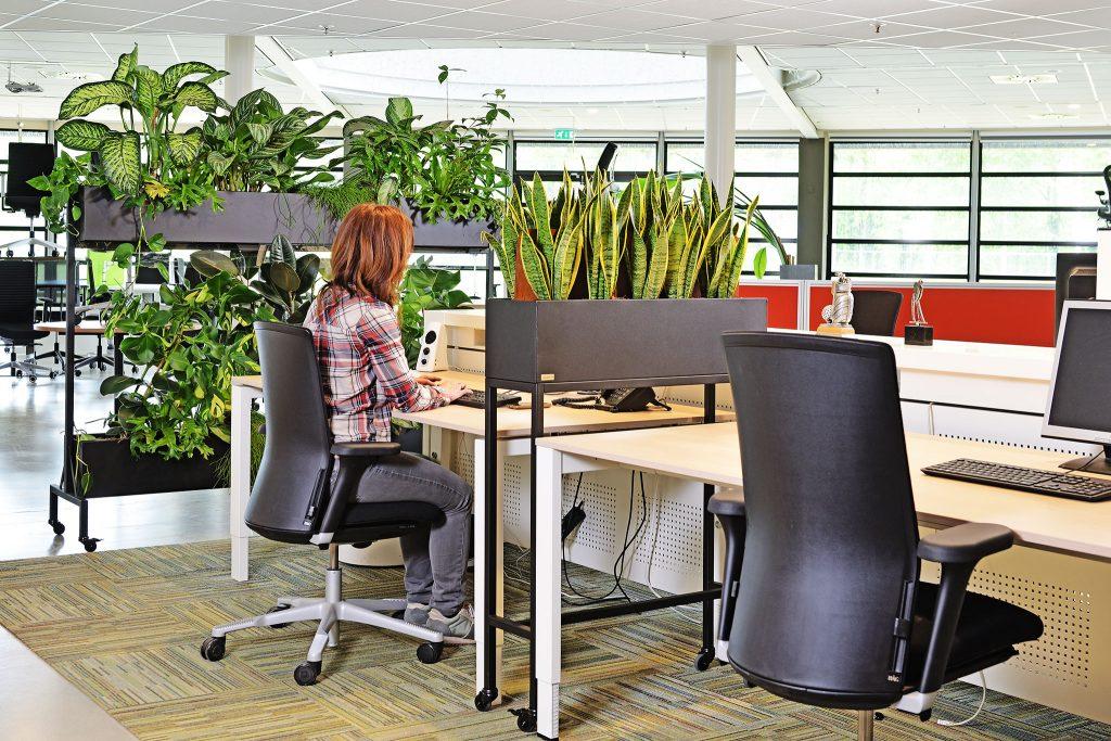Veilig werken op een groen kantoor | GRØNN